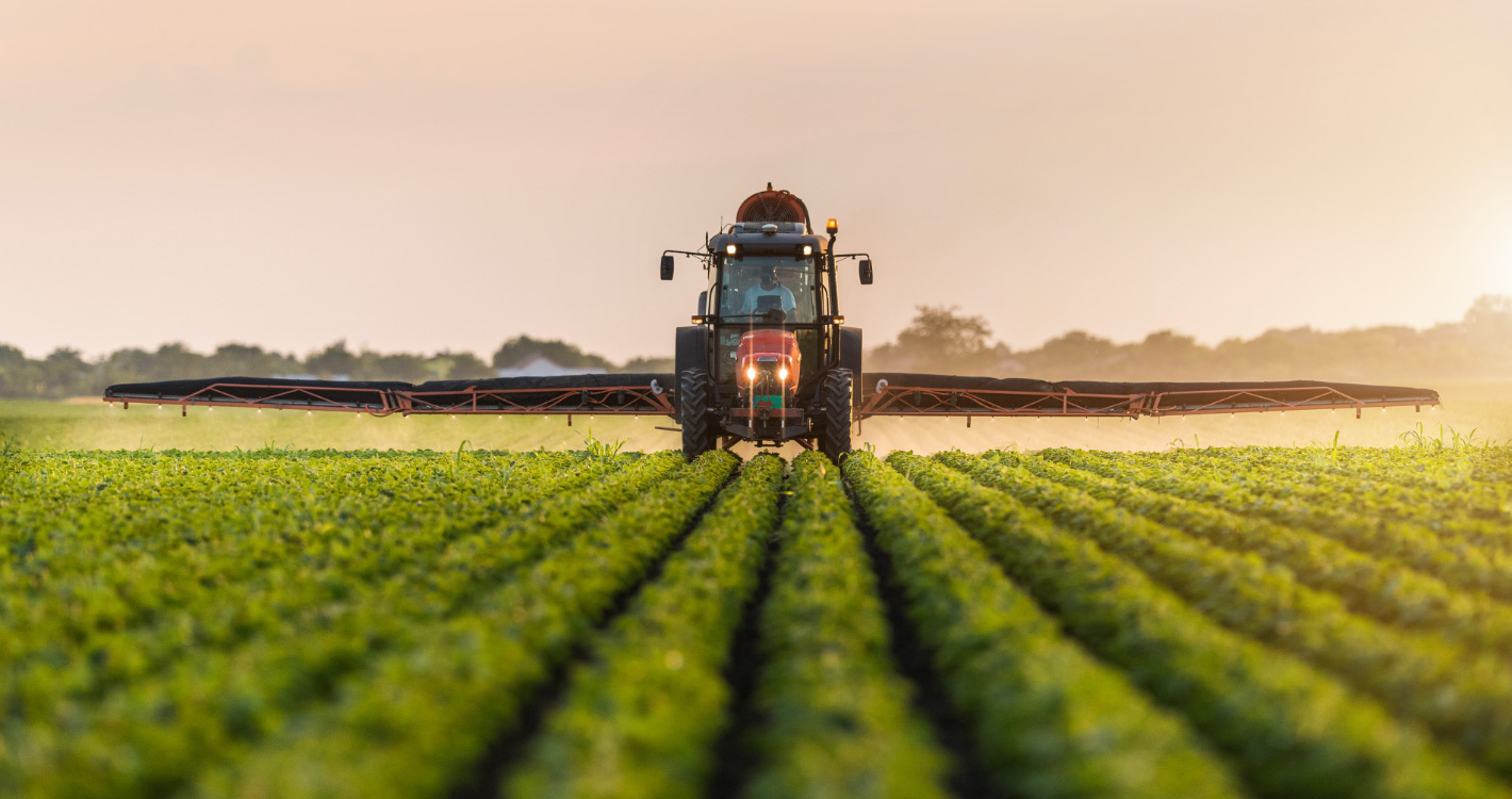 field of crops being watered by tractor